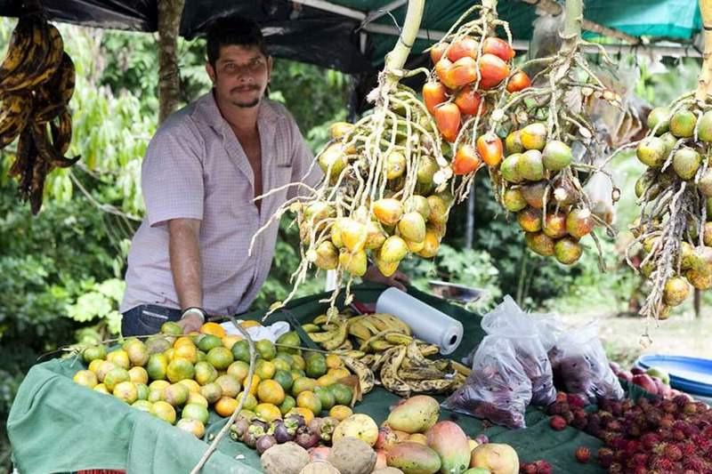 5 Fruits You Must Try in Costa Rica