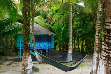 my traveling hammock   shannon my traveling hammock   shannon   tefl certification in costa rica      rh   costaricatesol